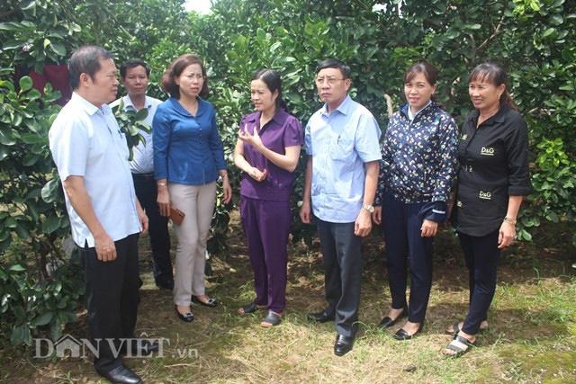 Những kết quả tiêu biểu sau 10 năm xây dựng NTM của tỉnh Quảng Ninh  - Ảnh 5.