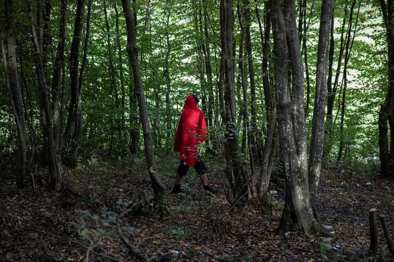 Cắm trại trong rừng - Ảnh 2.