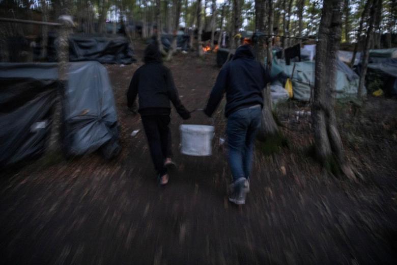Cắm trại trong rừng - Ảnh 4.
