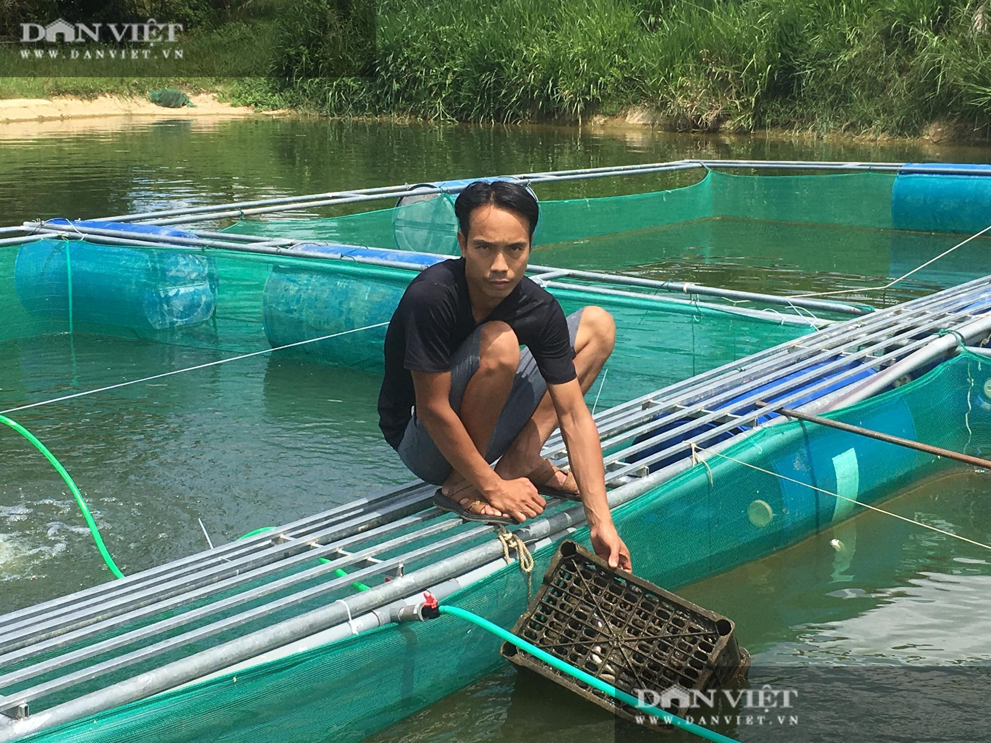 Thanh Hóa: Nuôi cá chạch lấu trên đất lúa kém hiệu quả…lời 300 triệu/năm - Ảnh 3.