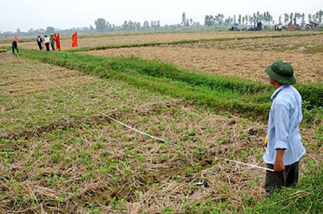 Người nước ngoài có được thuê, mua bán đất nông nghiệp tại Việt Nam? - Ảnh 1.