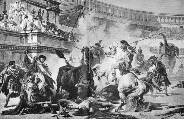 """Đấu trường La Mã: Chuyện lạ võ sĩ giác đấu từ chối tự do vì """"cuồng"""" chiến đấu - Ảnh 3."""