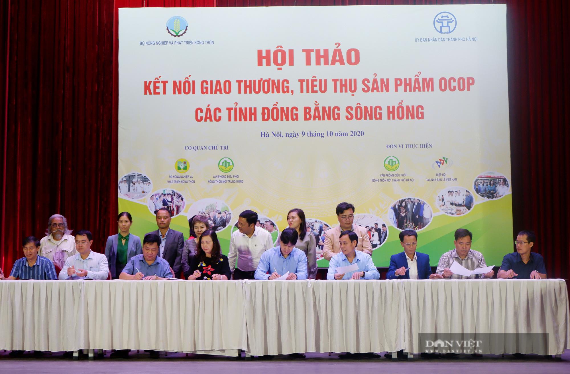 Hà Nội: Quy tụ hàng nghìn sản phẩm nông sản đặc sắc, chỉ toàn là đặc sản, người dân Thủ đô hài lòng - Ảnh 6.