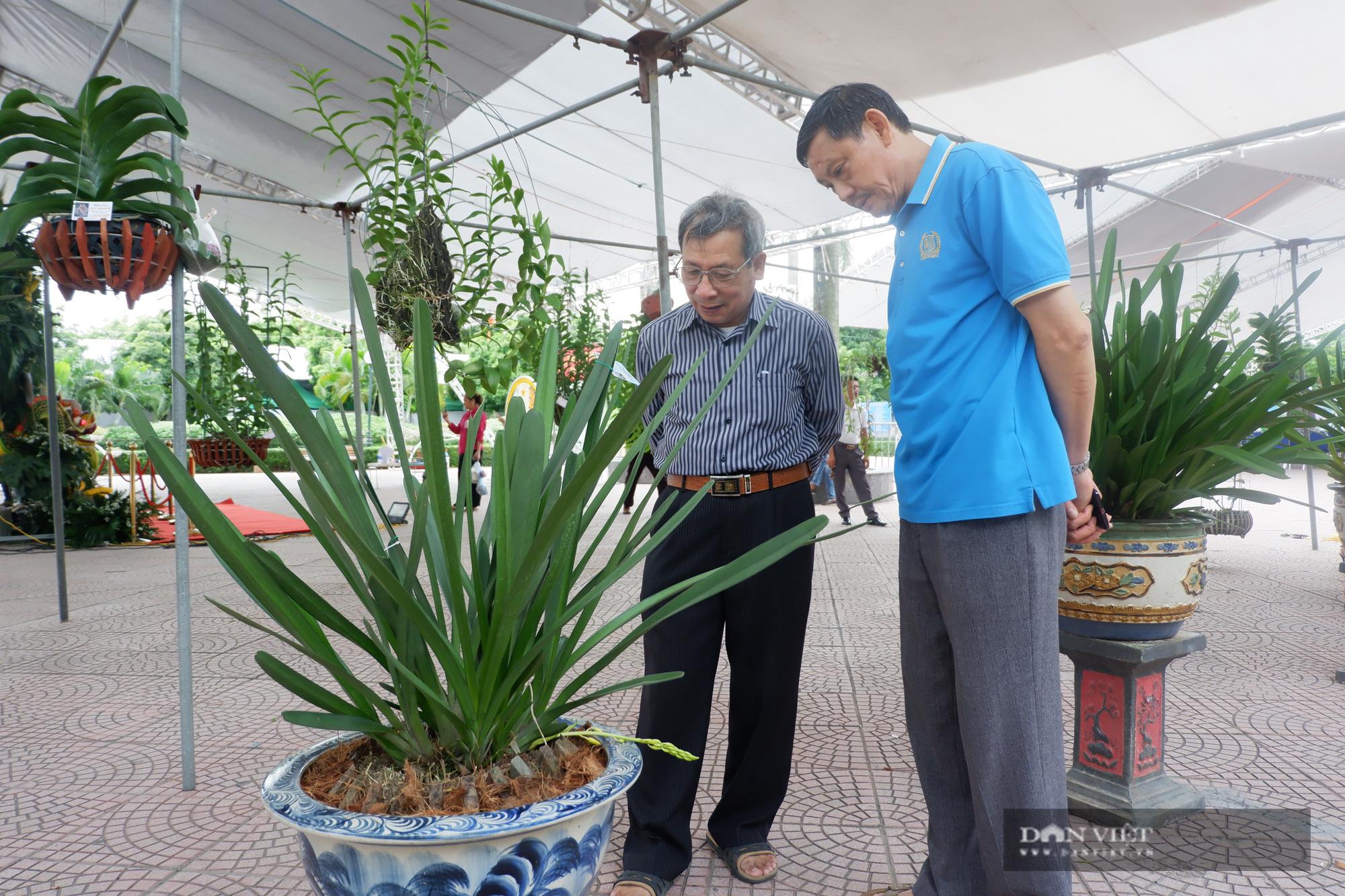 Hà Nội: Quy tụ hàng nghìn sản phẩm nông sản đặc sắc, chỉ toàn là đặc sản, người dân Thủ đô hài lòng - Ảnh 3.