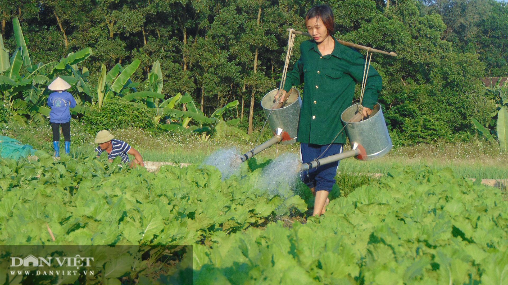 Trồng rau an toàn, nữ giám đốc 8x Thái Nguyên kiếm vài chục triệu đồng mỗi tháng - Ảnh 7.