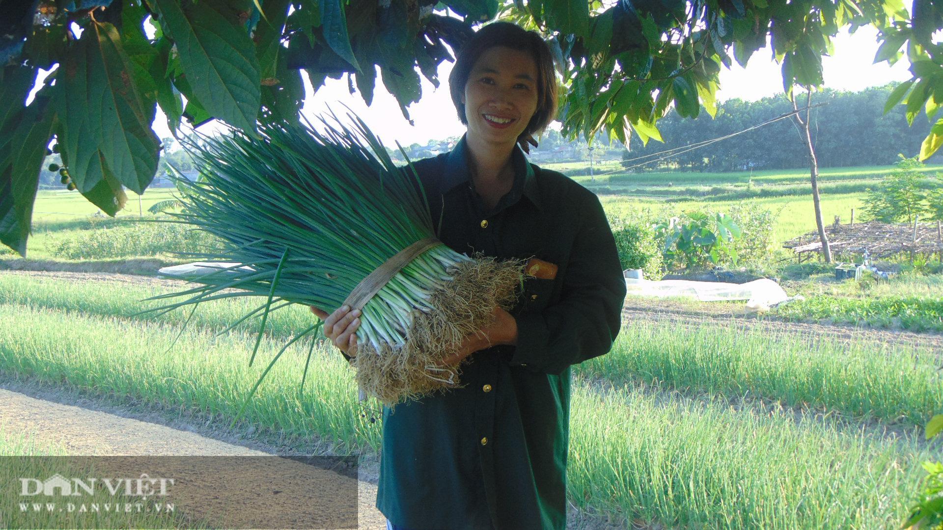 Trồng rau an toàn, nữ giám đốc 8x Thái Nguyên kiếm vài chục triệu đồng mỗi tháng - Ảnh 13.