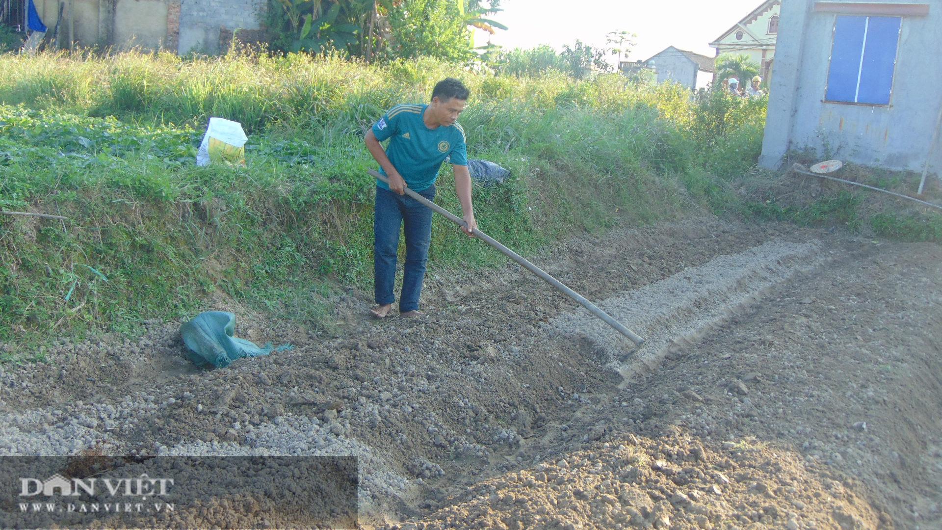 Trồng rau an toàn, nữ giám đốc 8x Thái Nguyên kiếm vài chục triệu đồng mỗi tháng - Ảnh 3.