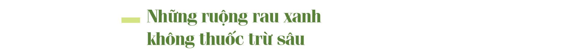 """Nguyễn Văn Tuất - """"thủ lĩnh"""" nông dân giỏi với biệt tài chăn nuôi 10 tỷ đồng/năm - Ảnh 1."""