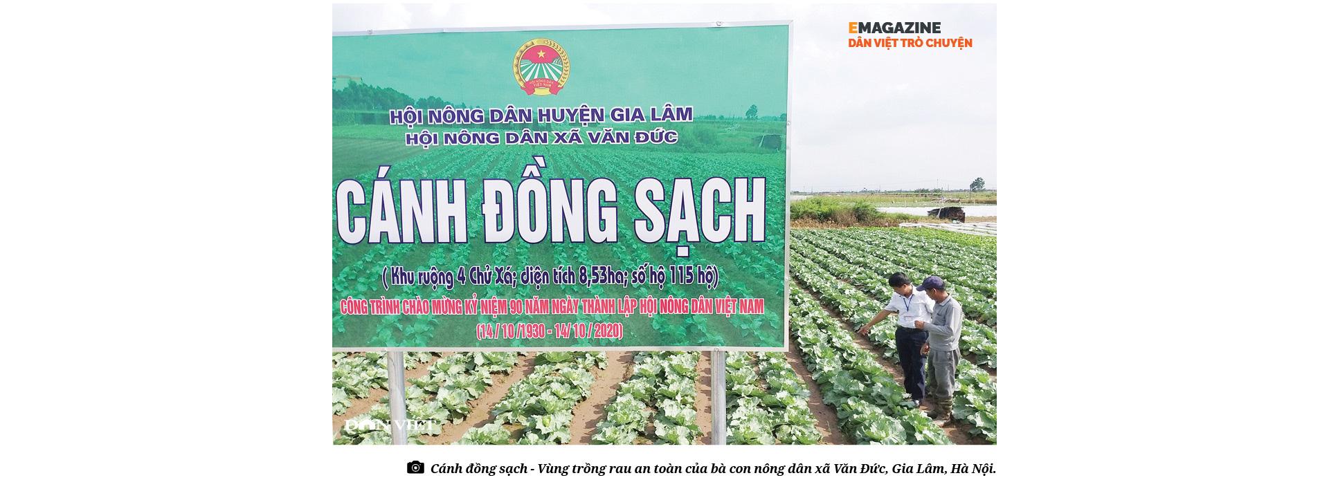 """Nguyễn Văn Tuất - """"thủ lĩnh"""" nông dân giỏi với biệt tài chăn nuôi 10 tỷ đồng/năm - Ảnh 2."""