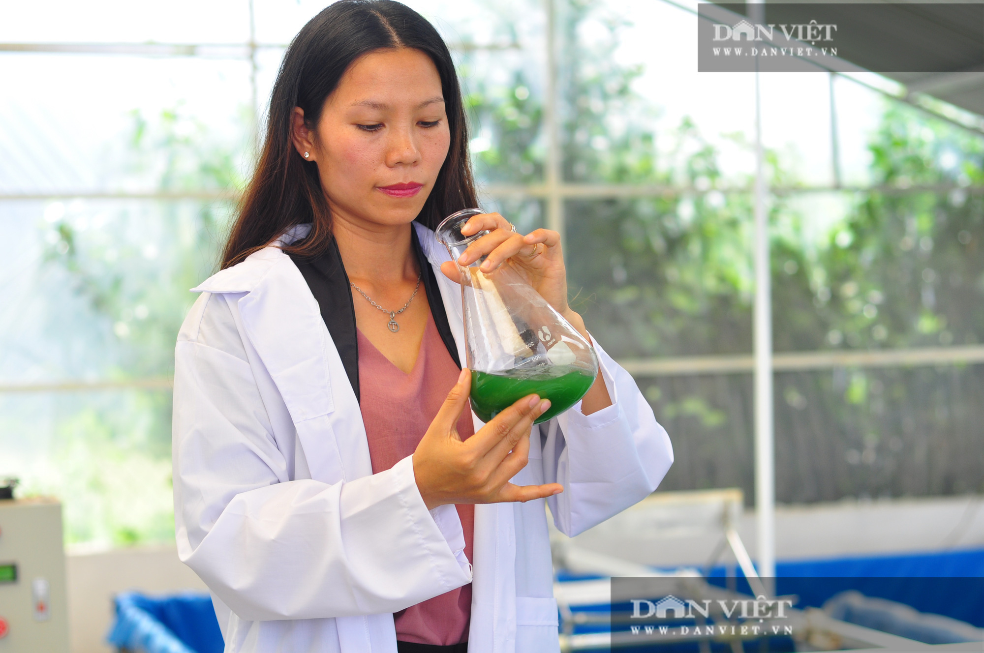 Nữ thạc sĩ đưa tảo xoắn ngoại về Tây Nguyên nuôi trồng - Ảnh 3.