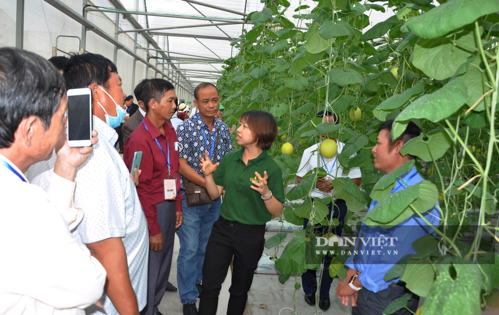 """Nông dân xuất sắc đã mắt ngắm hệ thống điều hòa khí hậu """"khổng lồ"""" để chăm sóc rau của VinEco - Ảnh 1."""
