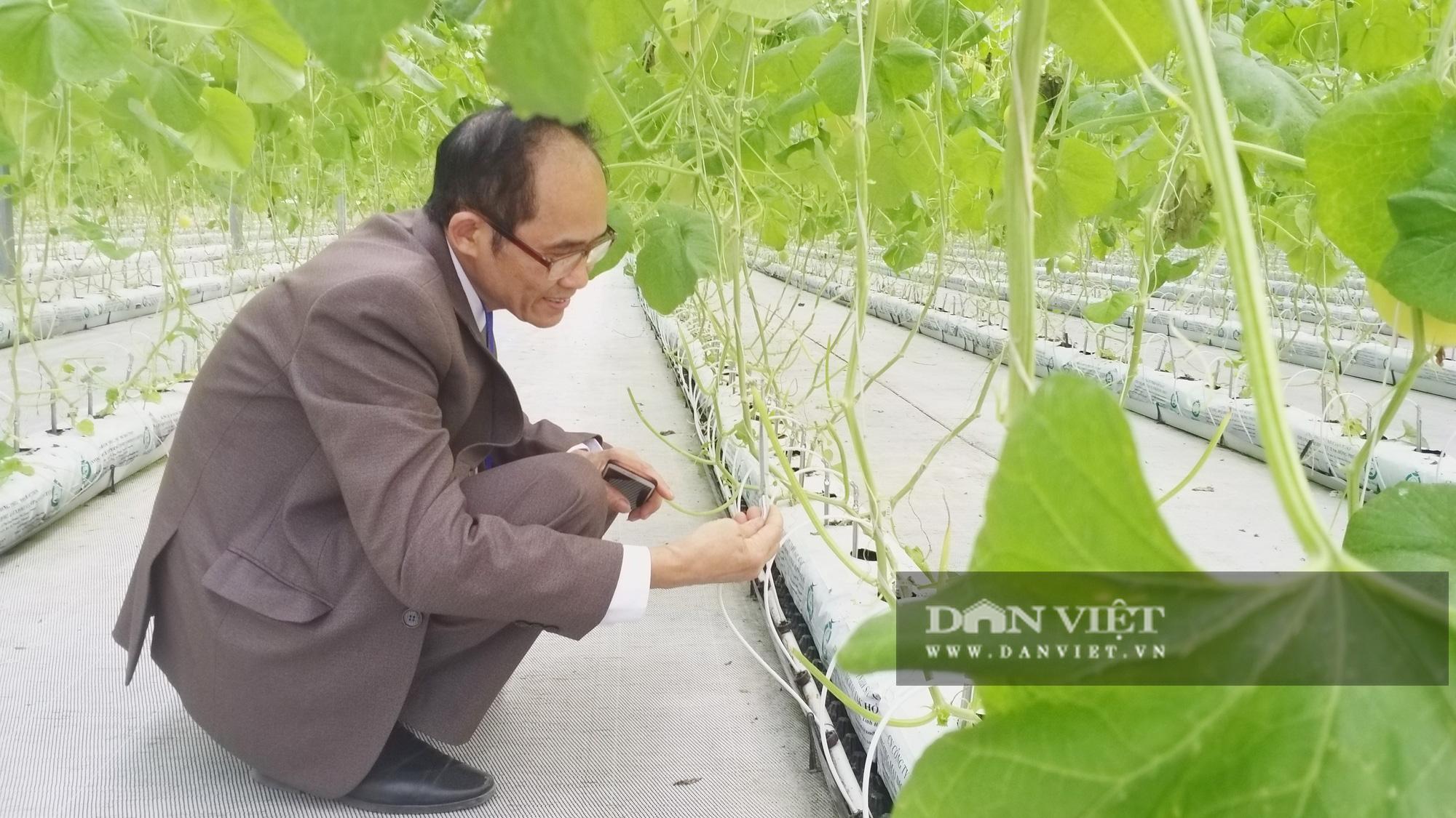 """Nông dân xuất sắc đã mắt ngắm hệ thống điều hòa khí hậu """"khổng lồ"""" để chăm sóc rau của VinEco - Ảnh 4."""