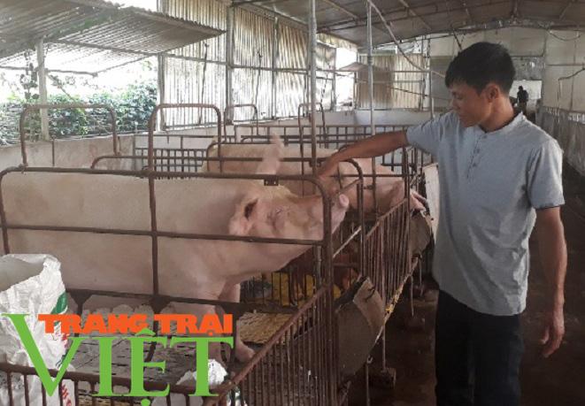 Yên Châu giúp bà con nông dân thoát nghèo và vươn lên làm giàu  - Ảnh 4.