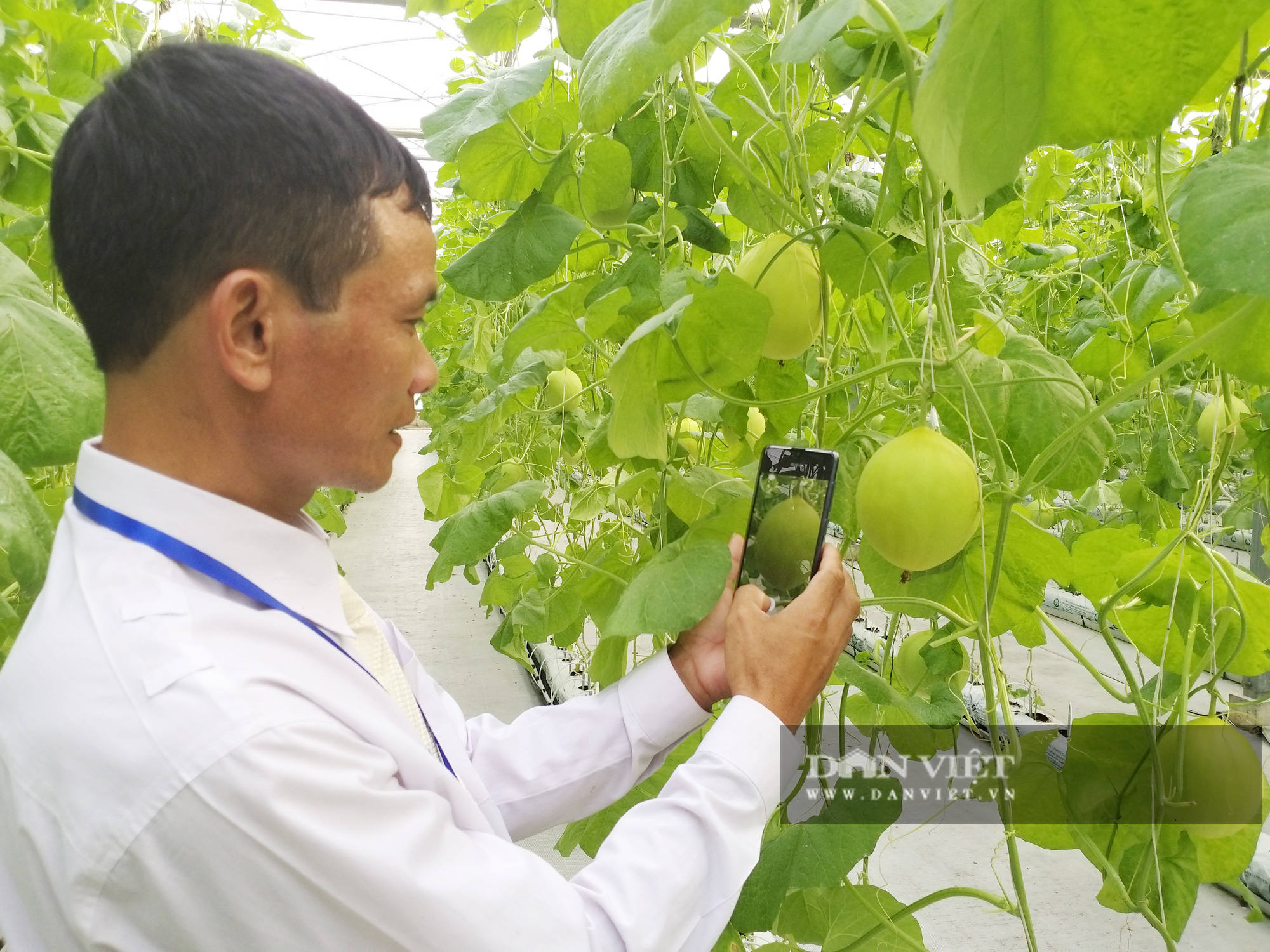 """Nông dân xuất sắc đã mắt ngắm hệ thống điều hòa khí hậu """"khổng lồ"""" để chăm sóc rau của VinEco - Ảnh 2."""