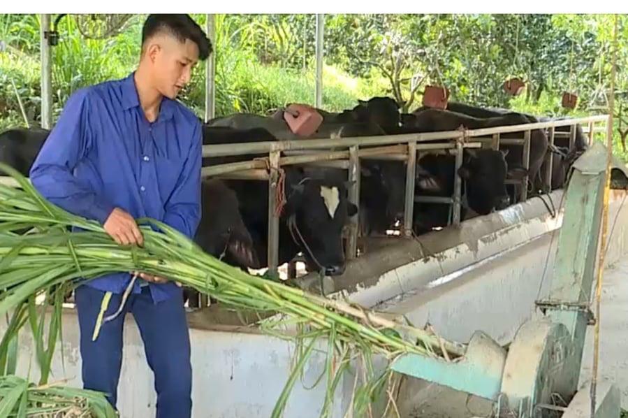 Đại hội Đảng bộ tỉnh Phú Thọ khóa XIX: Phấn đấu 84% số khu dân cư đạt chuẩn nông thôn mới - Ảnh 3.