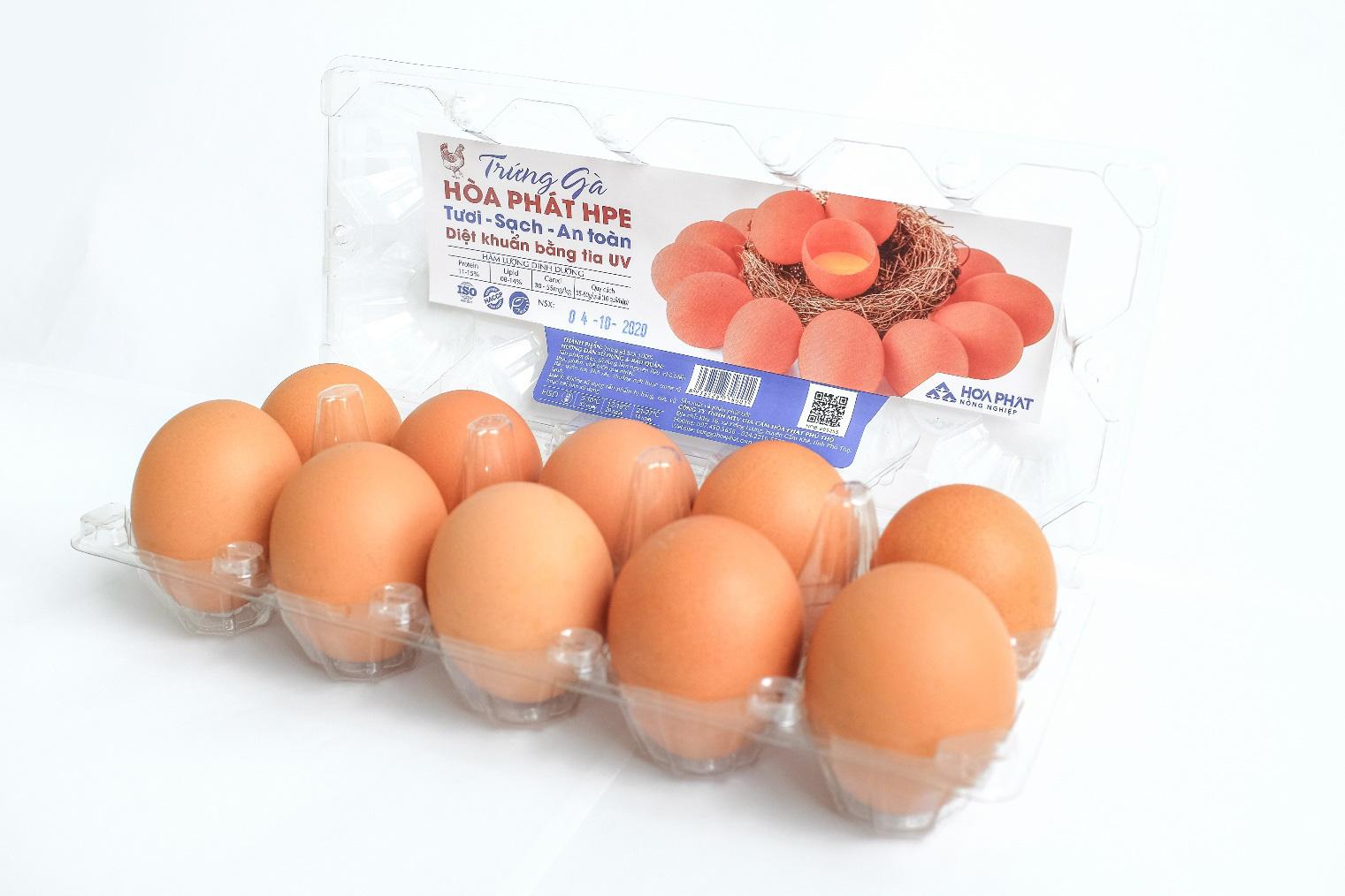Đại gia Hòa Phát bán gần nửa triệu quả trứng gà sạch mỗi ngày, đứng số 1 miền Bắc - Ảnh 3.