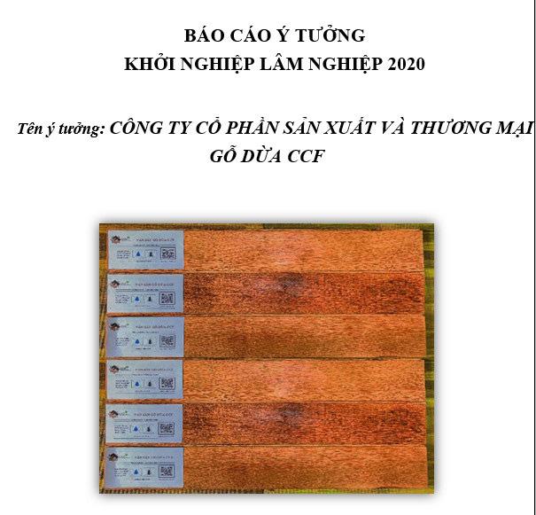 Sàn gỗ từ cây dừa đoạt giải nhất cuộc thi Khởi nghiệp sáng tạo Lâm nghiệp - Ảnh 1.