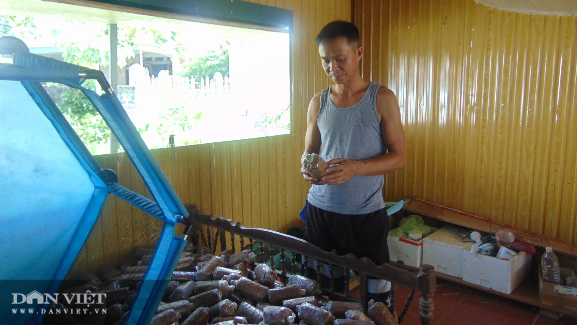 Trồng nấm rơm thương phẩm, anh nông dân Thái Nguyên bỏ túi vài trăm triệu mỗi năm - Ảnh 4.