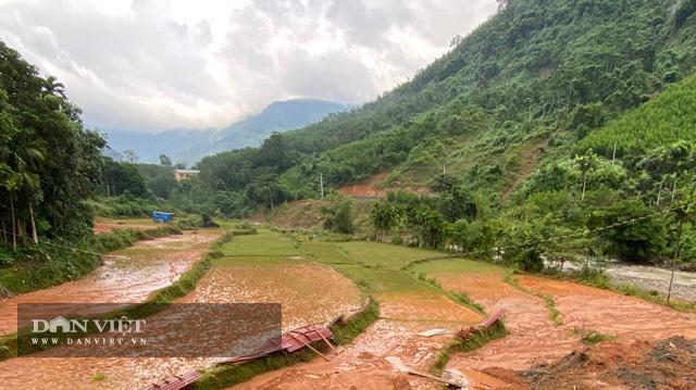 """Quảng Ngãi: Dự án khẩn 77 tỷ """"phủ"""" đất sỏi xuống đầy ruộng lúa của dân  - Ảnh 5."""