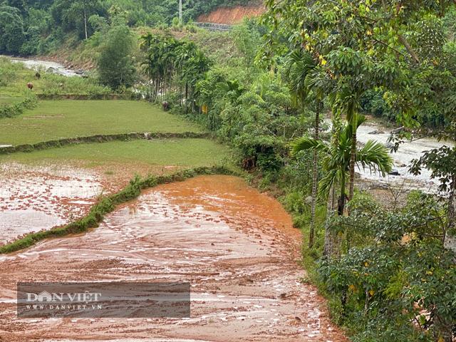 """Quảng Ngãi: Dự án khẩn 77 tỷ """"phủ"""" đất sỏi xuống đầy ruộng lúa của dân  - Ảnh 3."""