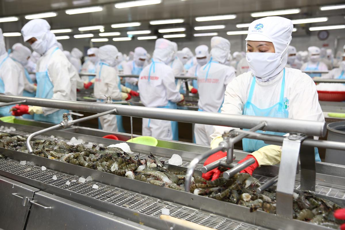 Ông Trương Gia Bình: Nhờ công nghệ, Minh Phú có thể đoán trước sản lượng tôm để ký hợp đồng - Ảnh 2.