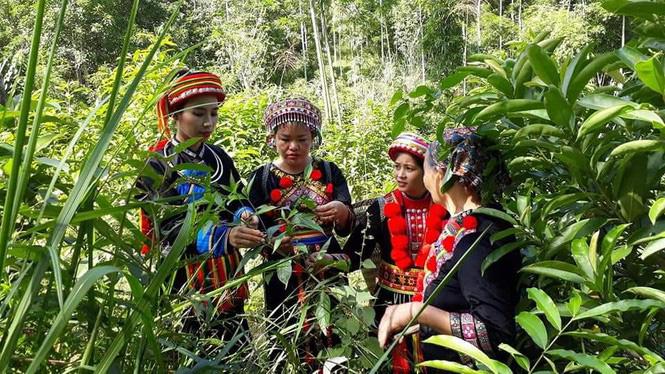 Khởi nghiệp từ sản phẩm truyền thống để bảo vệ văn hóa của người Dao - Ảnh 1.