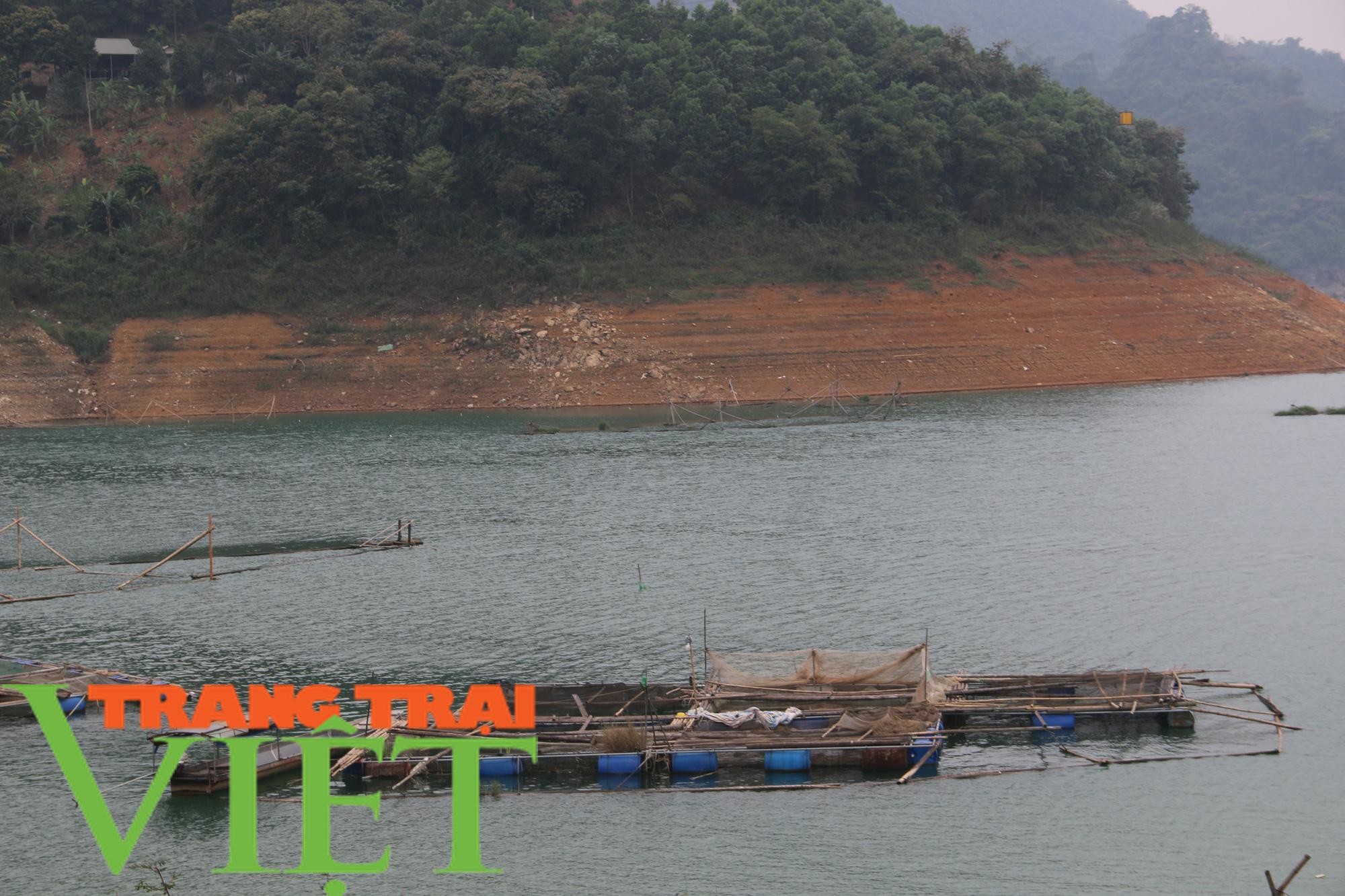 Hòa Bình: Phát huy tiềm năng thế mạnh nuôi cá lồng trên vùng lòng hồ - Ảnh 2.
