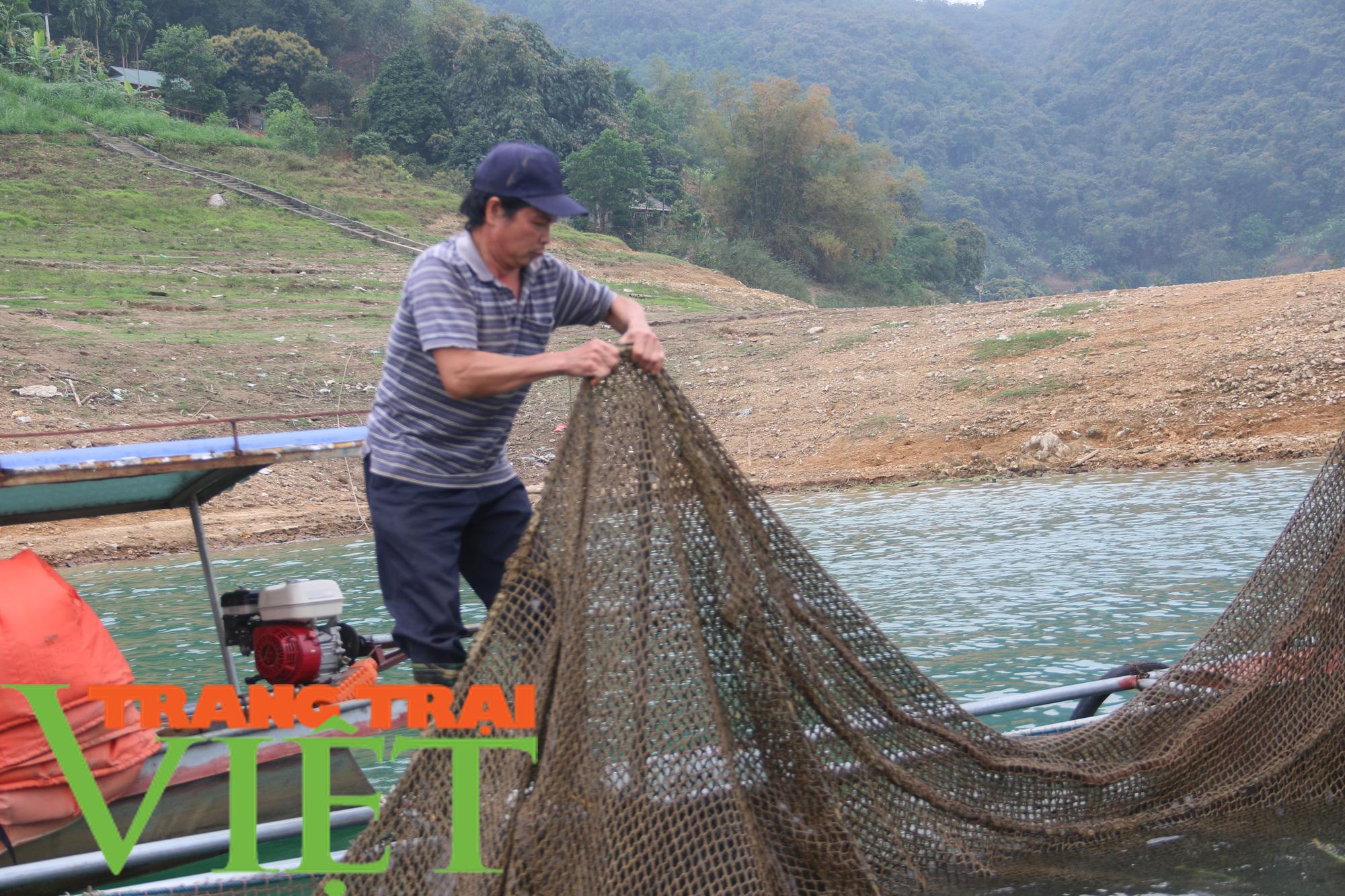 Hòa Bình: Phát huy tiềm năng thế mạnh nuôi cá lồng trên vùng lòng hồ - Ảnh 8.