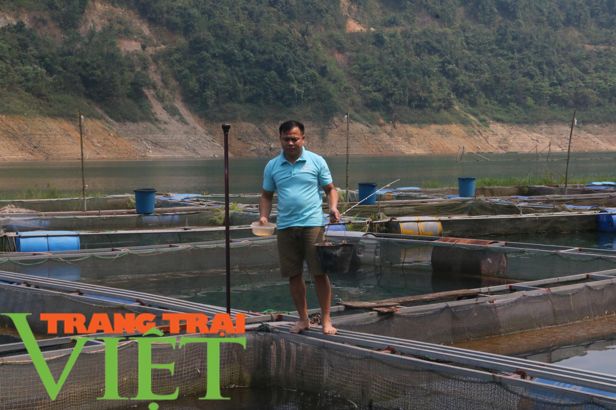 Hòa Bình: Phát huy tiềm năng thế mạnh nuôi cá lồng trên vùng lòng hồ - Ảnh 6.
