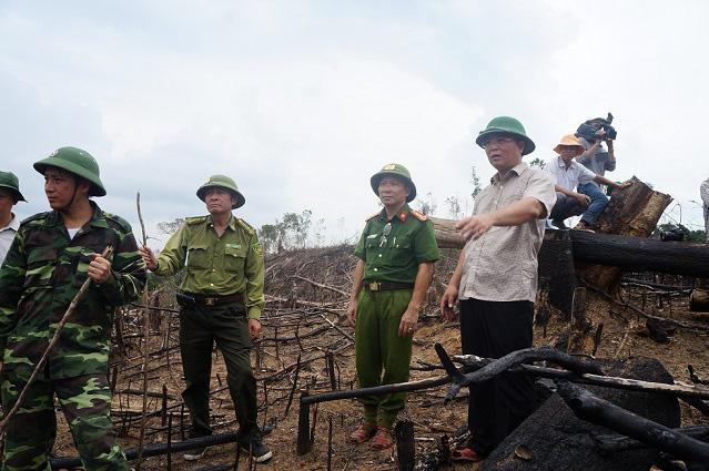 Chủ tịch UBND tỉnh Quảng Nam: Kêu gọi tư nhân đầu tư vào sân bay Chu Lai - Ảnh 4.