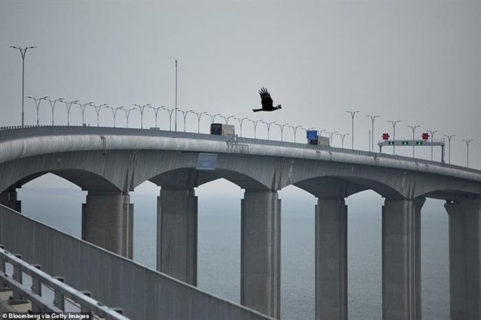 Chiêm ngưỡng cây cầu vượt biển dài nhất thế giới tại Trung Quốc - Ảnh 3.