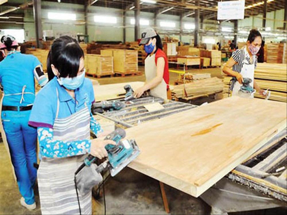 Rủi ro lớn với ngành gỗ Việt Nam - Ảnh 1.