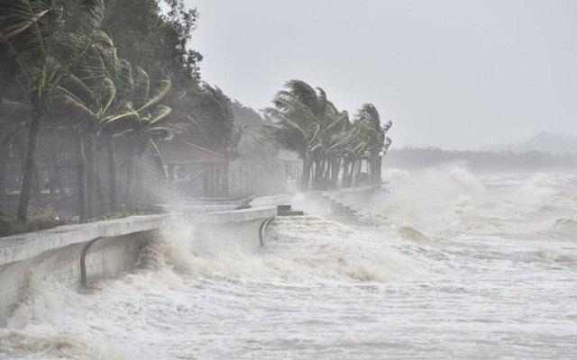 Biển Đông có thể đón áp thấp mới trong tuần tới - Ảnh 1.