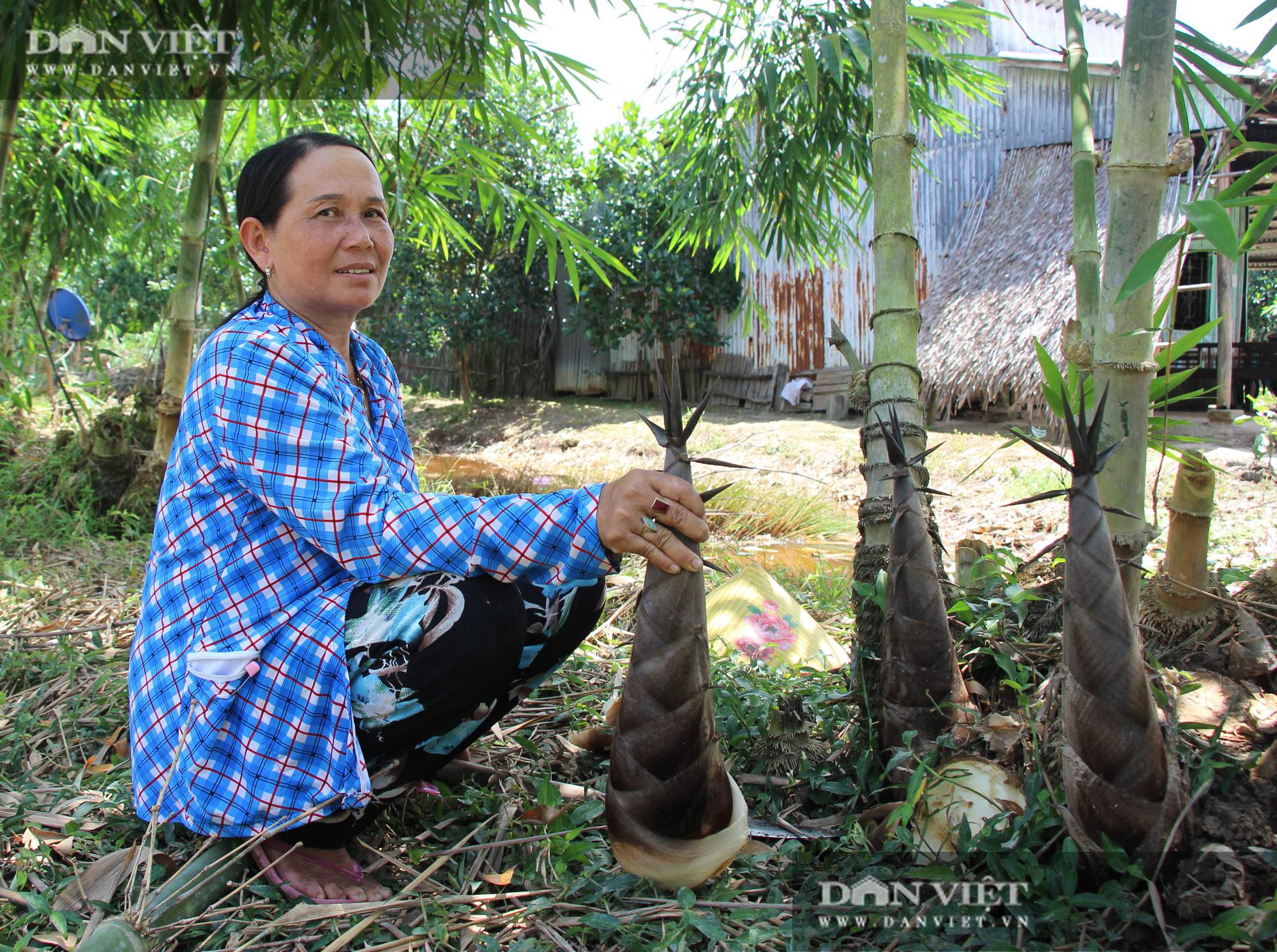 Thu lãi trăm triệu đồng/năm nhờ trồng loài cây bán không bỏ thứ gì - Ảnh 3.