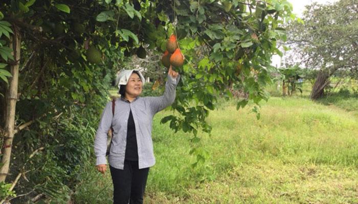 Nhà sáng lập Seed To Table với 23 năm vì nông nghiệp hữu cơ Việt Nam - Ảnh 1.
