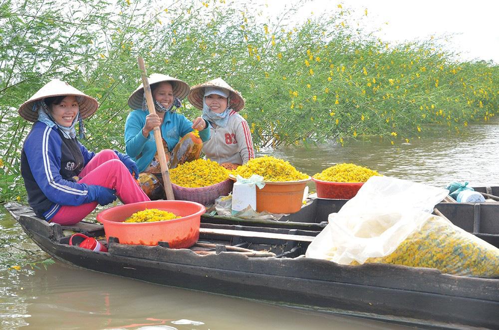 Trái dại, rau mọc hoang hút hàng mùa nước nổi ở tỉnh An Giang, dân đi hái kiếm tiền trong tháng lũ - Ảnh 2.