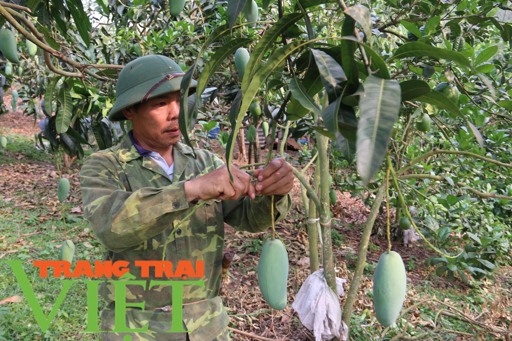 Thứ Trưởng NNPTN: Sơn La là một điển hình về trồng cây ăn quả - Ảnh 2.