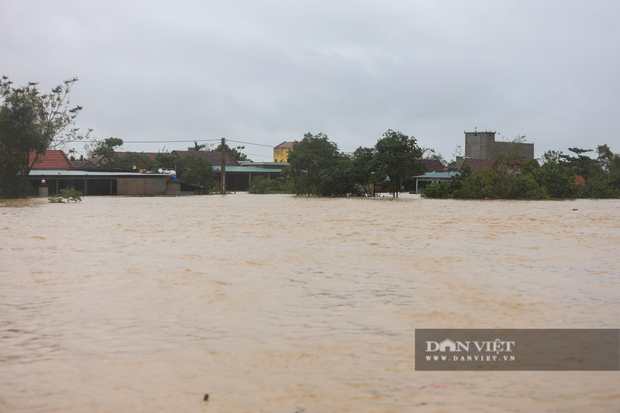 Cảnh vật vã sinh tồn mùa mưa lũ của người dân huyện Lệ Thủy - Ảnh 1.
