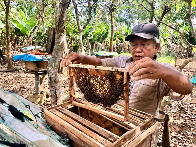 Tiếp vốn giúp nông dân nuôi ong, thả cá lồng - Ảnh 1.