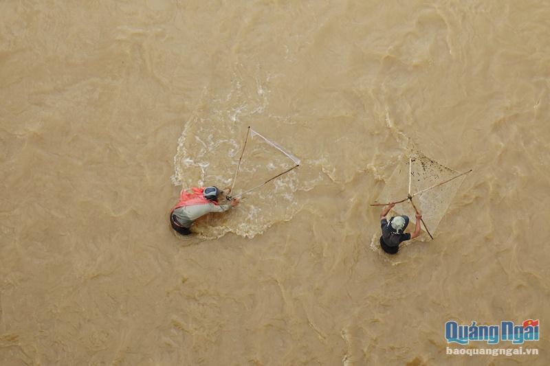 Quảng Ngãi: Mưa lũ đục ngầu, nước chảy xiết mà vẫn rủ đi bắt cá, có cả người già, trẻ em thì thấy rùng mình - Ảnh 1.