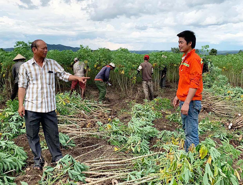 Trồng thứ cây gì lãi hàng trăm triệu mà một ông nông dân mồ côi thành tỷ phú ở tỉnh Gia Lai? - Ảnh 1.