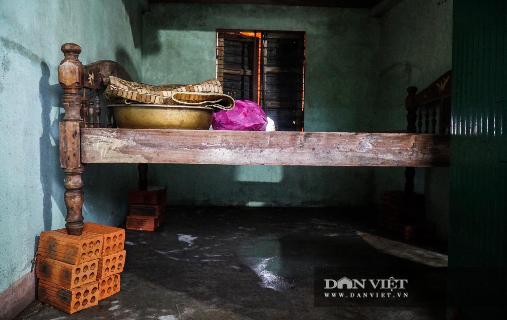 Người dân Quảng trị khóc ròng vì lúa mọc mầm, nhà cửa tan hoang sau lũ - Ảnh 9.