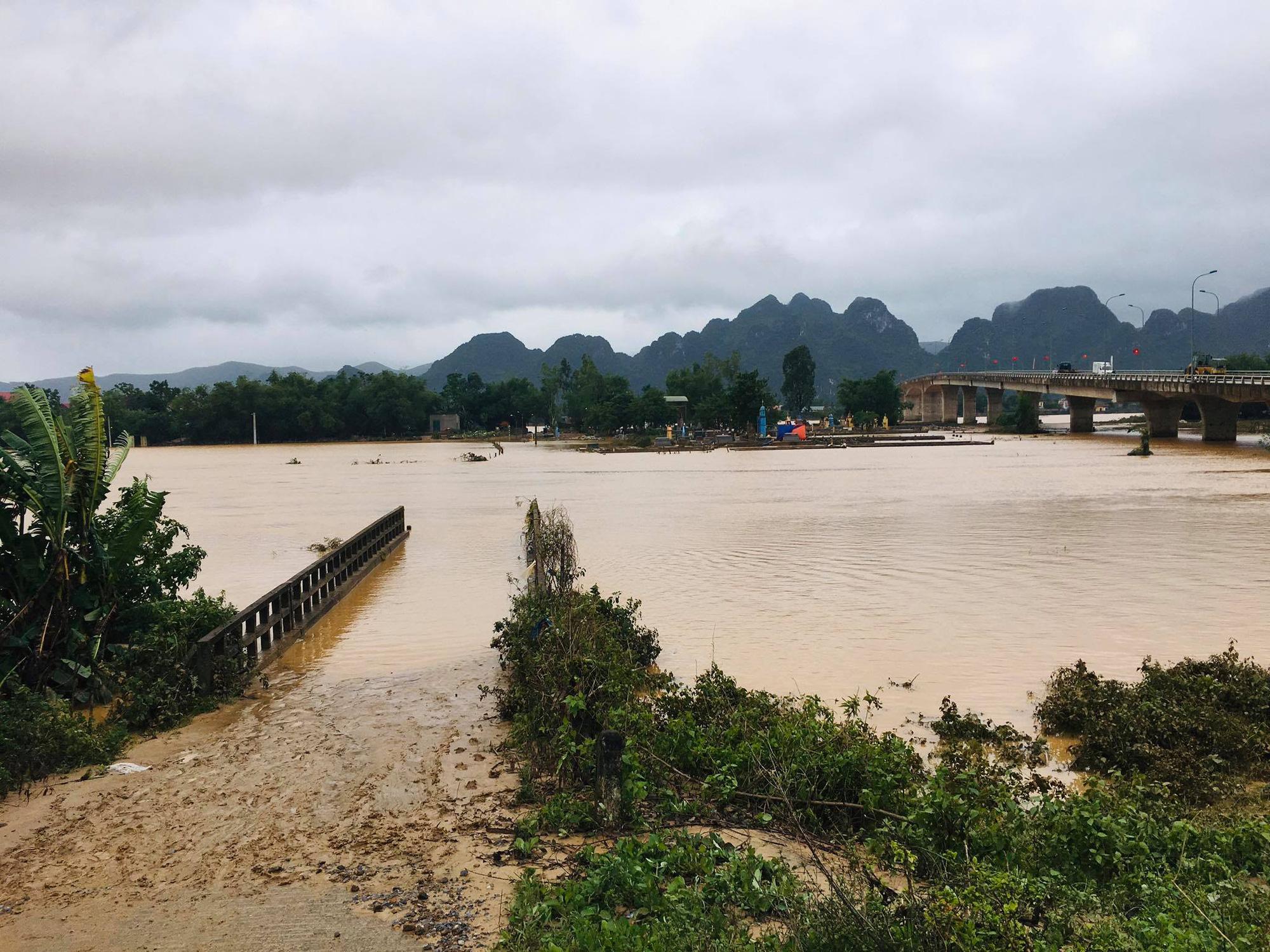 """Người dân Quảng Bình đưa trâu bò lên cầu bắc qua sông Gianh """"chạy"""" lũ lịch sử - Ảnh 8."""