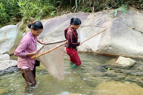 Cá suối ở Lào Cai tinh ranh, nhưng chị em phụ nữ ở đây vẫn bắt được hàng trăm con - Ảnh 1.