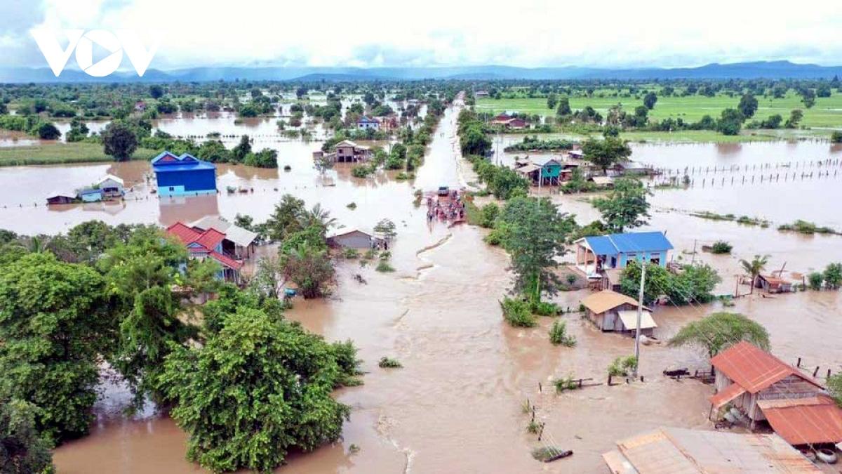 Lũ lụt tại Campuchia có thể ảnh hưởng tới xuất khẩu thóc sang Việt Nam - Ảnh 1.