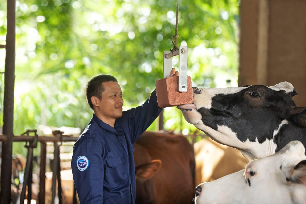 Cô Gái Hà Lan và hành trình kiến tạo giá trị cho ngành chăn nuôi bò sữa bền vững - Ảnh 2.