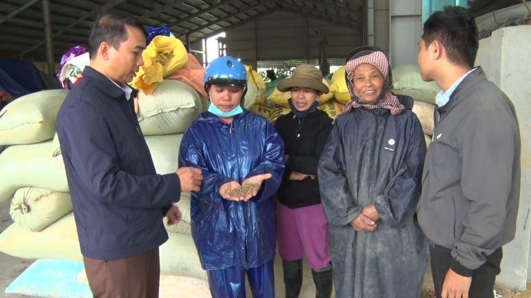Quảng Trị: Nông dân vùng lũ lụt vui lên nhờ được giúp đỡ điều này - Ảnh 1.