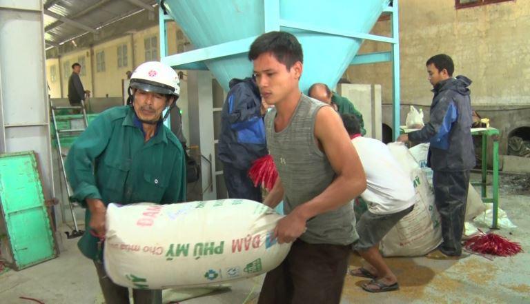 Quảng Trị: Nông dân vùng lũ lụt vui lên nhờ được giúp đỡ điều này - Ảnh 3.