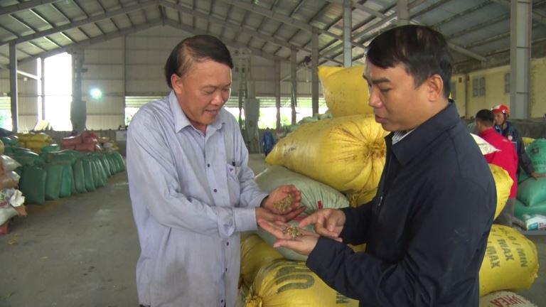 Quảng Trị: Nông dân vùng lũ lụt vui lên nhờ được giúp đỡ điều này - Ảnh 5.