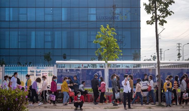 Thời điểm bùng nổ đầu tư nước ngoài vào nông thôn Việt Nam - Ảnh 1.